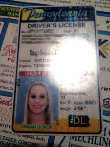 The fake ID used by IUP student Kayla M. Cioffo. Submitted photo taken with mobile phone and flash.
